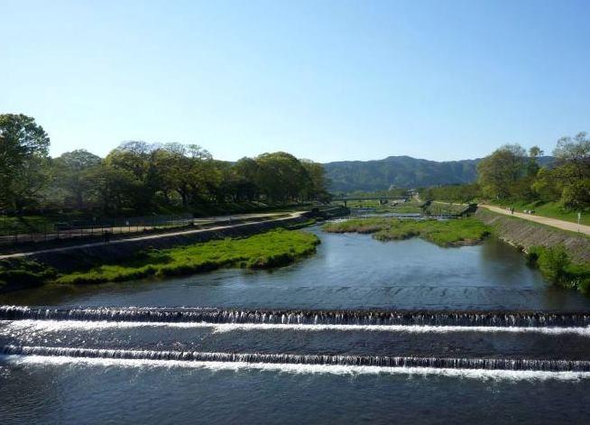 賀茂川河畔