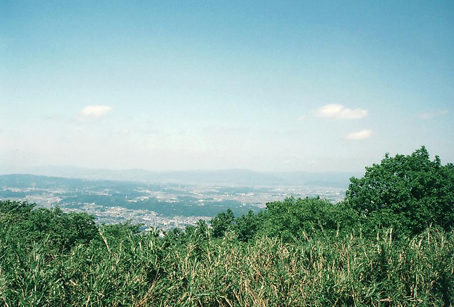 生駒山からの景色